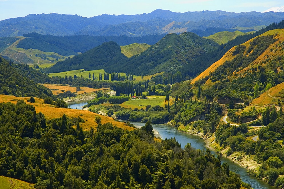 Interesting Facts About The Beautiful Country Of New Zealand - 18 shocking facts nature